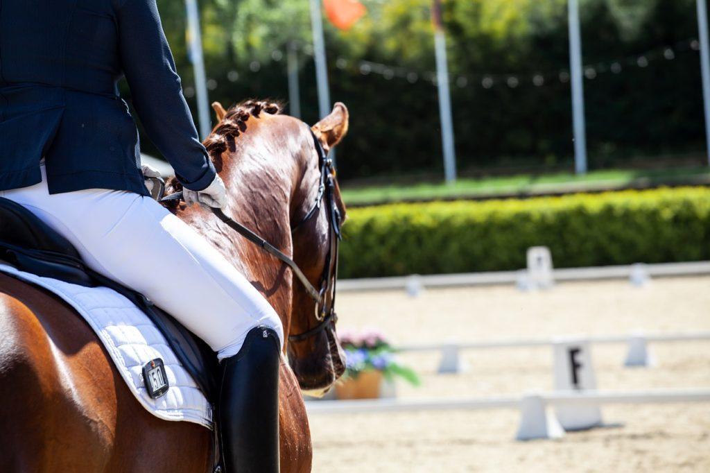 La bonne position à cheval